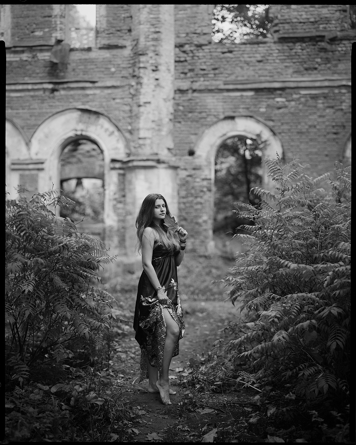 Усадьба Врангеля, фото на большой формат, пленка, фотограф Денис Шмигирилов