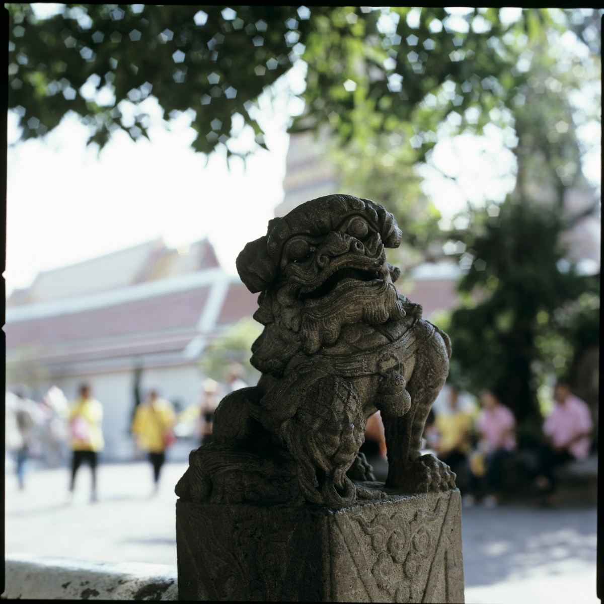Таиланд hasselblad